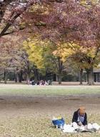 Tokyo-automne__04