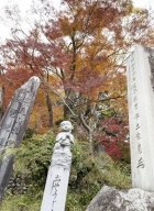 Tokyo-automne__09