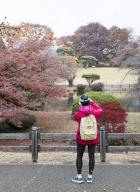 Tokyo-automne__11