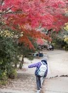 Tokyo-automne__15