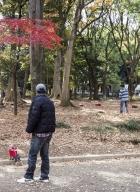 Tokyo-doudous en laisse__04