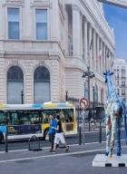 marseille-centre ville-10