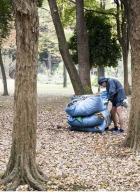 ramasseur de feuilles-1b
