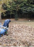 ramasseur de feuilles-6b