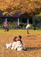tokyo-parc yoyogi-4