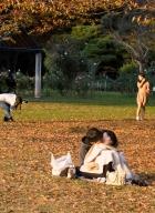 tokyo-parc yoyogi-5